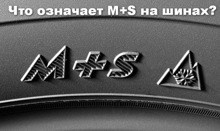 MS - Что означает м плюс с на резине